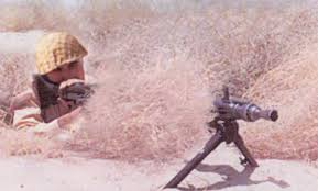 keeping in view the importance of desert warfare training it was decided by genera headquarters in 1980 to elish army desert warfare at chhor