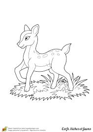 Coloriage Cerfs Biches Et Faons Page 1