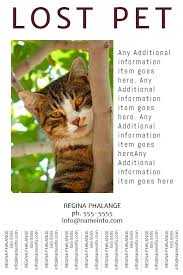 Lost Pet Flyer Maker Awesome Lost Pet Flyer With Tearoff Tabs Template Wanted Poster