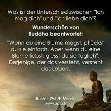 Buddha Sprüche Freundschaft Poolvogel