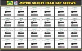 350 Piece Holo Krome Metric Socket Head Cap Screw Drawer