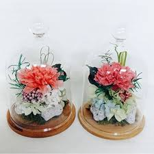 carnation preserved flower never withered rose in a glass dome special day gift