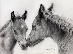 38 Beste Afbeeldingen Van Paard Kunst Draw Drawings Of Horses En