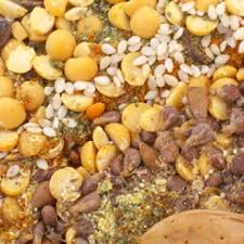 Grains, Beans, Nuts, and Seeds - Diagnosis:Diet