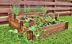 3 tier raised vegetable flower bed made from fsc timber 62 99 farm and garden supplies