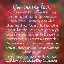 You Are My Everything Quotes Magnificent 48 My Everything Quotes On Pinterest My Everything Love Of 48