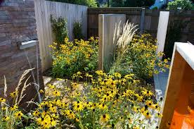 Small Picture Family garden design in North London Earth Designs Garden Design
