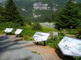 Interpretive Signs Along The Tour Route Alaska Nature Tours