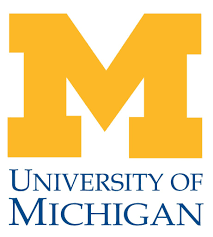 university of michigan supplemental essay guide