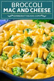 broccoli mac and cheese dinner at the zoo