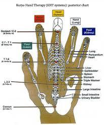 Hand Reflexology Chart Left Hand Reflexology Charts Hand Foot Ear Reflexology Chart Tips