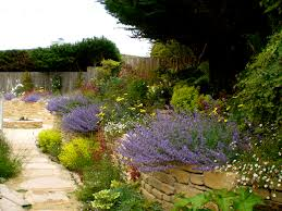 Small Picture Best Drought Tolerant Garden Design Ideas Gallery Decorating