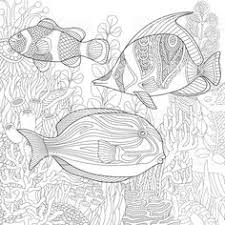 stylized position of tropical fish underwater seaweed and cs ocean coloring pagesfish coloring pagemandala coloring pages coloring book