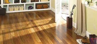 Green Flooring Products   Carlsonu0027s Flooring   San Antonio TX