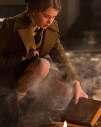 liesel meminger photo album here is when i saved or stole a book from a fire it was a book burning bonfire and i was heartbroken seeing all of the books being destroyed