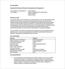 Ceo Job Description Template 7 Free Word Pdf Format