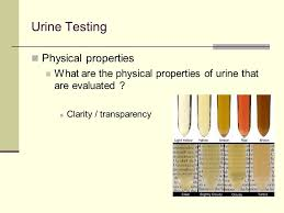 Urine Color And Clarity Chart Body Fluid Analysis Urine Mini Review For Ua Course Final