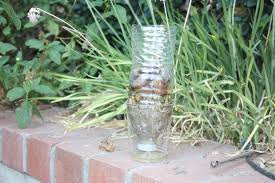 homemade water filter bottle. Picture Of Simple Water Filter Out A Waterbottle Homemade Bottle