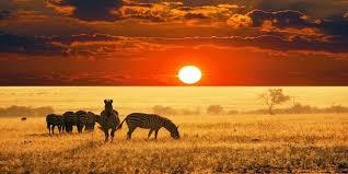 Risultati immagini per sud africa paesaggi