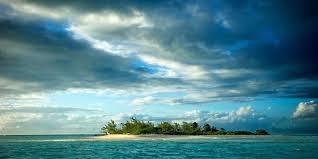 ocean landscape ocean to outback australian landscape paintings