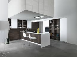 Designer Kitchens Designer Kitchens Sydney Cloe Custom Kitchen By Thinkdzine