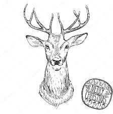эскиз оленя голову оленя вектор животных иллюстрации для футболку
