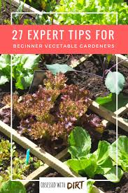 when you first get into vegetable gardening there s a lot of things to learn it s