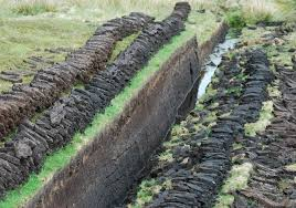 Image result for peat