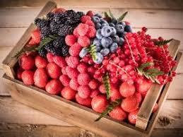 """Résultat de recherche d'images pour """"fruits rouges vogot"""""""