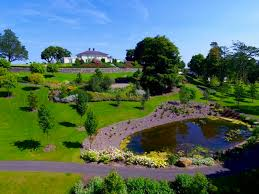 Small Picture Landscape firm lifts all Ireland industry award for record seventh