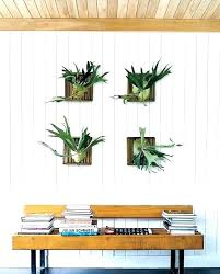 indoor wall hanging planters hang a copper rod in the kitchen mounted plants han