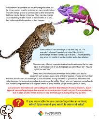 animal camouflage clarendon learning animal camouflage lesson plan · animal camouflage worksheet