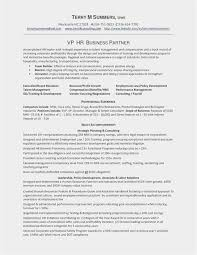 Download 55 Combination Resume Template 2019 Free Download