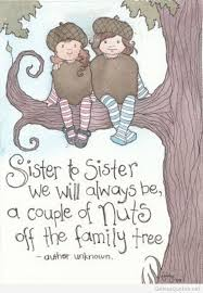 Sister Quote Amazing Cute Sister Quote