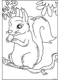 Kleurplaat Eekhoorn In Een Boom Kleurplatennl