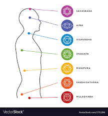 Chakra System Of Human Body Energy Centers Vector Image