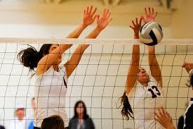 Resultado de imagem para volleyball school