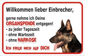 Pin Von Iris Auzinger Auf Tierbilder Hund Funnies Lustige