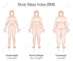 Healthy Weight Range Chart For Men Body Mass Index Bmi Underweight Normal Weight And Overweight
