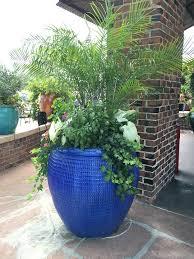 creative garden container pot