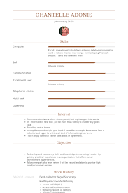 Debt Collector /Legal Secretary Resume samples