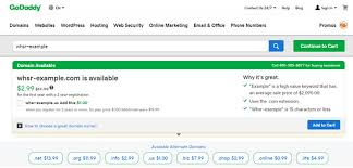 Should You Get Your Domain From Namecheap Or Godaddy Whsr