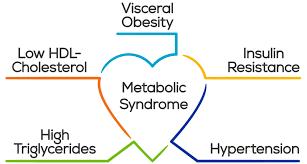 metabolik sendrom ile ilgili görsel sonucu