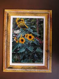 picture of paint or decorate the frame