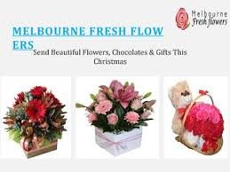 melbourne fresh flow ers