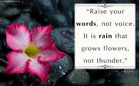Image result for raise your words not your voice