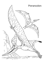 Two Pteranodons Dinosaurs Coloring Pages For