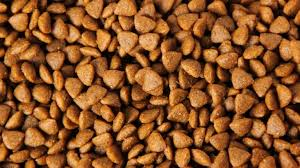 non prescription low phosphorus cat food. Non Prescription Low Phosphorus Cat Food