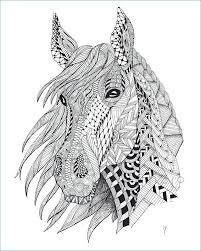 coloring book horse head page by in a pages for kids