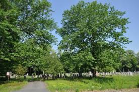 Franklin County Massachusetts Cemeteries | Access Genealogy